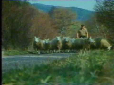 Isolation Shepherd Part 5 Strathfarrar, Loch Monar