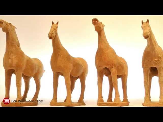 Tang Dynasty grey pottery horses