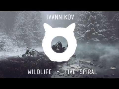 IVANNIKOV| Audio Spectrum #4|2018|Wildlife - Five Spiral|