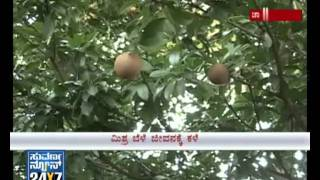 Agro special - Organic farming - Chamarajnagar farmer shows the way - Suvarna News