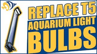 How to Replace T5, Metal Halide & Power Compact Aquarium Light Bulbs