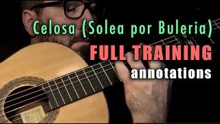 Celosa (Solea por Buleria) by Paco de Lucia - Full Video Training - Annotations