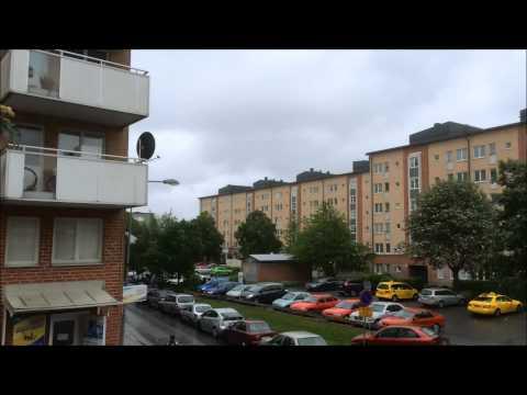 rinkeby film