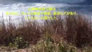 石原さとみ、岩田剛典、ディアシスター 千葉 ロケ地探訪 (最終回) 松下...