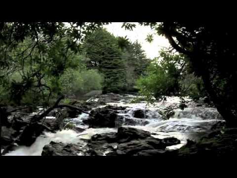 Ghazal by Pradeep Arora - Har Taraf Hai Dhuan Dhuan Yaaro