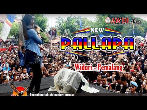 Free Download New Pallapa Terbaru 2018 Full Live Widuri Pemalang Mp3 dan Mp4