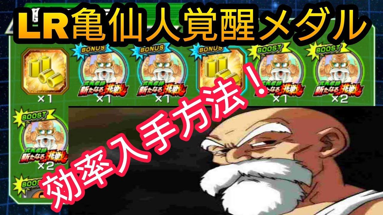 仙人 lr ドッカン バトル 亀