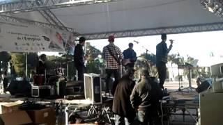 new algerian  band the cleeps