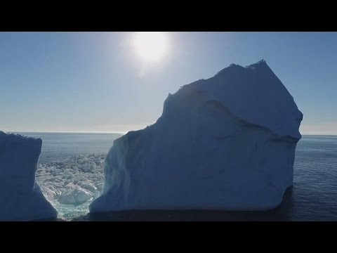 Canada's icebergs pose problems for ships, photo ops for tourists