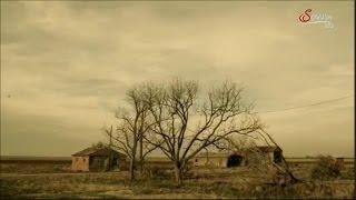Klima - Nonsens : Harrison Ford - Trockenheit - Years of Living Dangerously