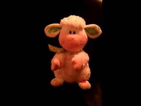 Het zingende schaap!