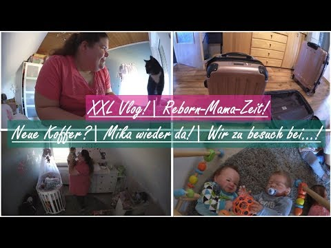NEUE KOFFER? || Reborn Mama XXL Vlog! ||...