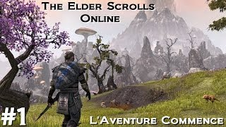 The Elder Scrolls Online Episode 1 FR - Découverte Gameplay : L