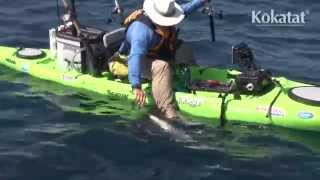 Kayak Fisherman Jim Sammons Hooks a Monster Roosterfish