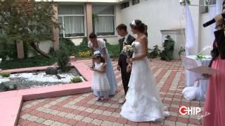 Загс теремок в Самаре регистрация брака Chipstudio 8987 902 49 37