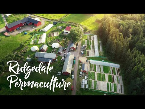 Swedish farm grossing $275,000+ EVERY SIX MONTH SEASON! // Ridgedale Permaculture