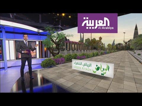 تعرف على مشروع الرياض الخضراء.. ملايين الأشجار في المدينة  - نشر قبل 8 ساعة