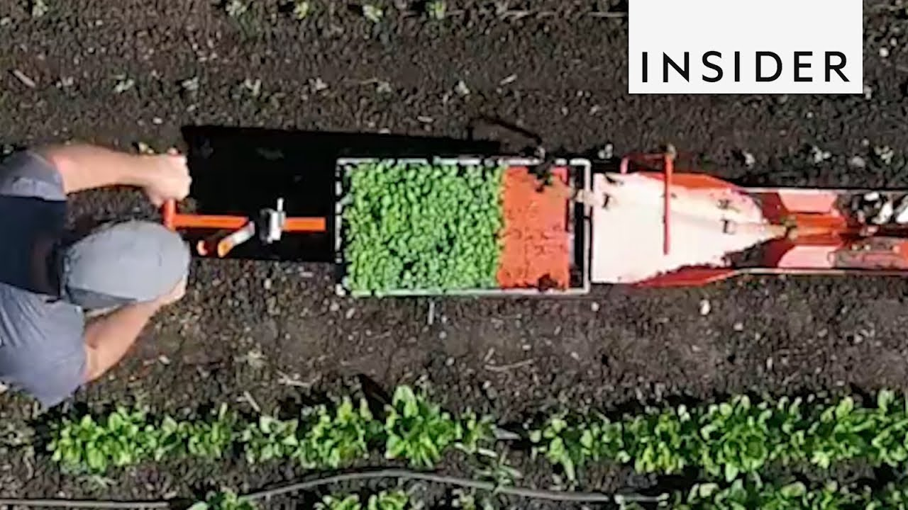machine makes planting a breeze youtube