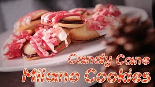 Mini Candy Cane Milano Cookies | Just Add Sugar