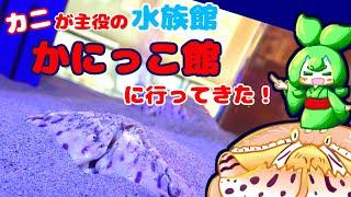 鳥取県にあるカニが主役の水族館!かにっこ館に行ってきましたー!