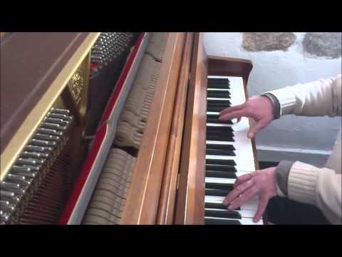 Piano Roy - Sauter Carus