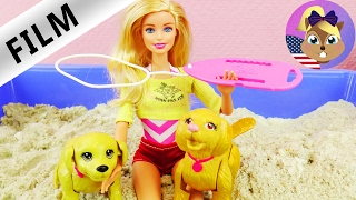 BARBIE LIFEGUARD | Short Film for Kids | Lifeguard Helps Puppies