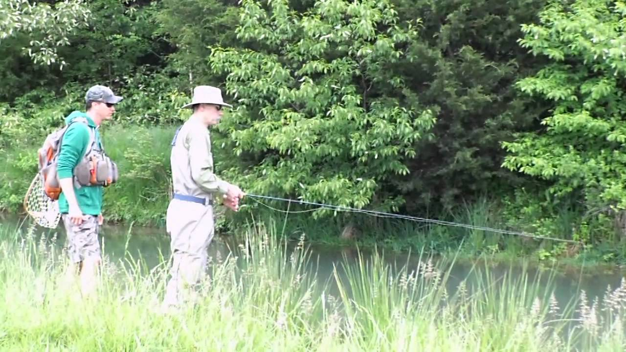 Fly fishing virginia for Mossy creek fly fishing
