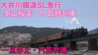 【大井川鐵道】SL臨時急行さくら号ヘッドマーク・大和田〜家山通過