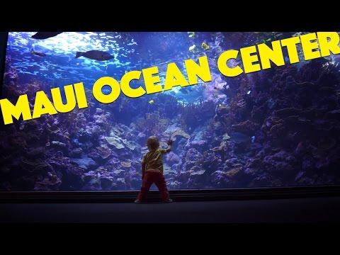 Maui Ocean Center - The Hawaiian Aquarium