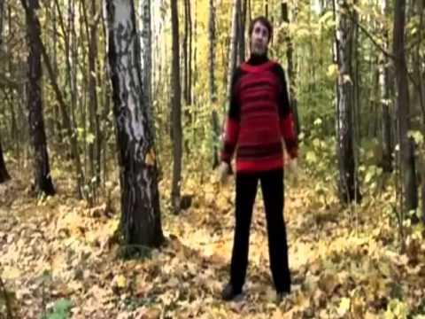 Дыхательная гимнастика Стрельниковой: видео и упражнения