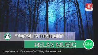Music Terapi Otak Suara Alam di Hutan Ketika Malam Hari Forest In The Night HD Vnd Channel