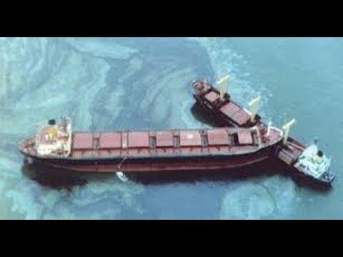 Collision Case Study Cargo Ships