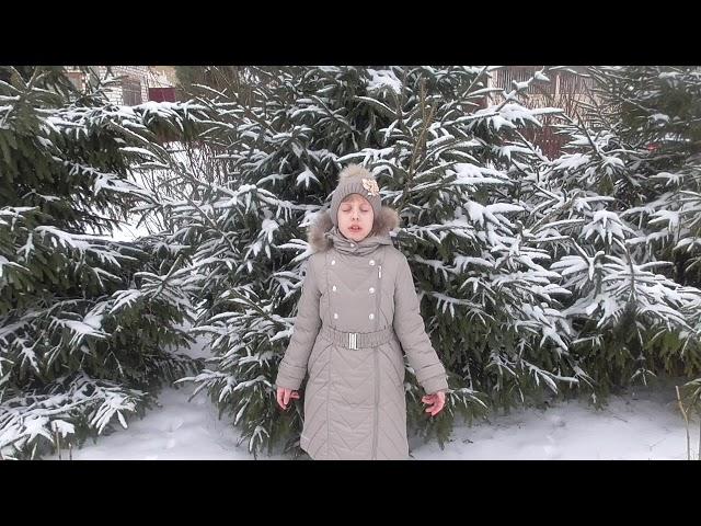 Изображение предпросмотра прочтения – МарияЕдунова читает произведение «Тишина в лесу. После ночной метели» А.А.Блока