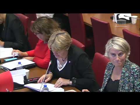 Commission des Affaires Sociales - La République doit être une chance pour tous - Question MP 021019