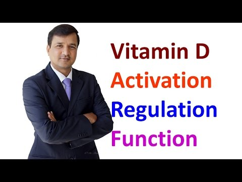 Vitamin D - Activation, Regulation and Function