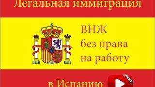 Иммиграция в Испанию. ВНЖ без права на работу. Часть 2.