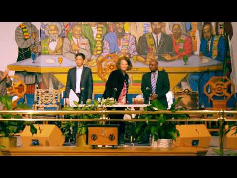 The United Nations Working Group of Experts on People of African Descent Town Hall