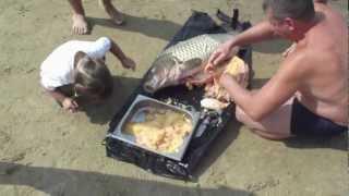 Рыбалка на Иртыше