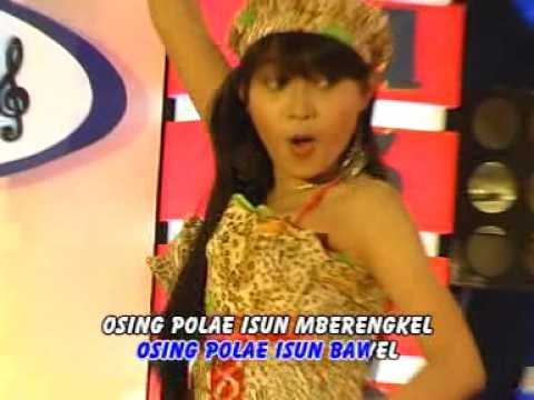 Dewi Rosalinda - Wong Lanang (Official Music Video)