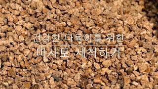 [다육이 키우기] 마사토 세척으로 다육이가 죽지 않는 화분을 만들어보자 (sand washing for succulent)