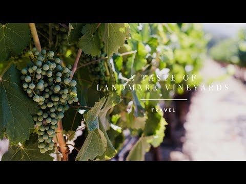 A Taste of Landmark Vineyards | Kitchen Confidante