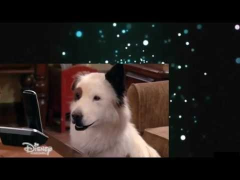 Dog With a Blog S02E24 The Kids Find Out Stan Blogs