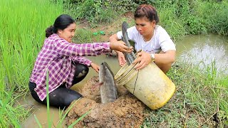Amazing Two girls Deep Hole for food - How To find food in Rice Field thumbnail