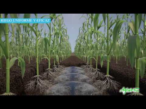 Riego Inteligente (AgroHC) thumbnail