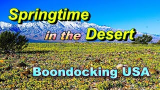 springtime-in-the-desert-boondocking-usa