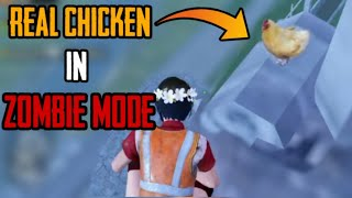 Real Chicken in Zombie mode - PUBG mobile