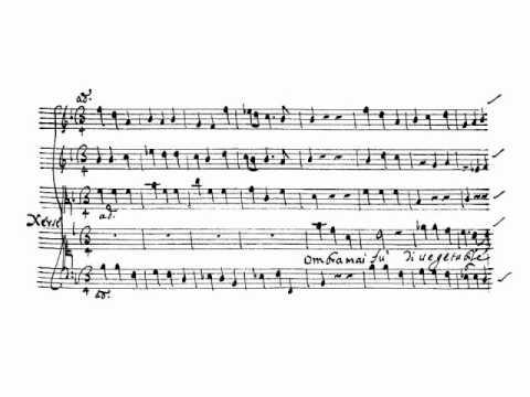 G.B. Bononcini: Ombra mai fu (Xersè) - Kermes (Osele)