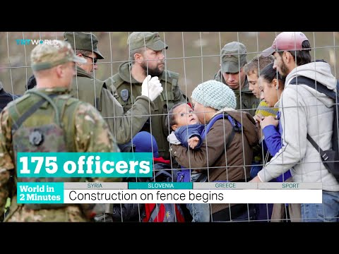TRT World - World in Two Minutes, 2015, November 11, 11:00 GMT