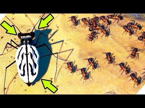 МУРАШКИ на МОРЕ - Игра Empires Of The Undergrowth. Симулятор муравейника