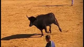 Benidorm Torero Fiesta de divertido interesante 2 Espana12 11 2017